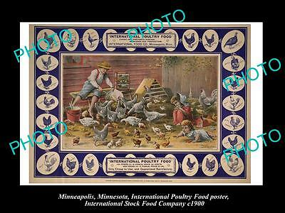 OLD LARGE PHOTO OF MINNEAPOLIS STOCK Co POSTER, CHICKEN & POULTRY FOOD c1900