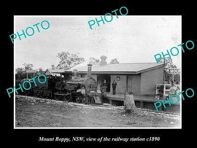 OLD LARGE HISTORIC PHOTO OF MOUNT BOPPY NSW, VIEW OF THE RAILWAY STATION c1890