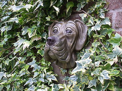 Big  Stone Bronzed Great Dane Dogs Head  Wall Sculpture