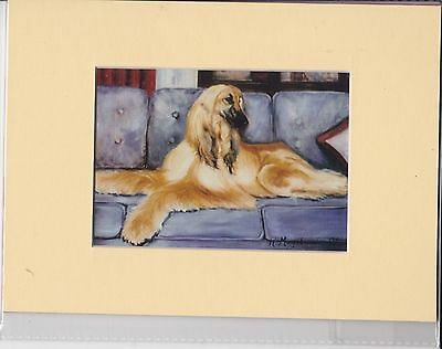 """8"""" X 6"""" MOUNTED  LITHOGRAPH PRINT of A AFGHAN HOUND STUDY"""
