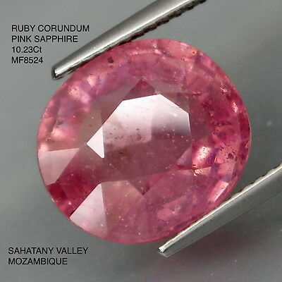 PINK SAPPHIRE NATURAL MINED [TREATED] 10.23Ct  MF8524
