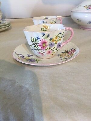 Shelley 13668 Wild Flowers Dainty Shape Pink Trim Cup & Saucer X 2