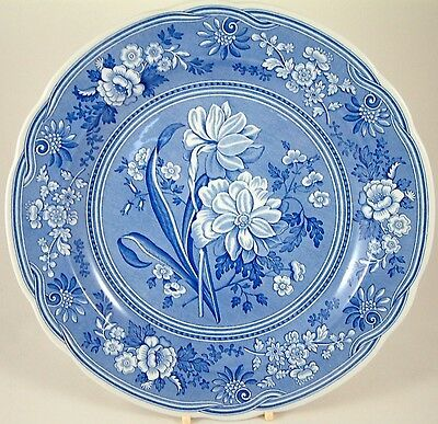"Spode Blue Room Collection Blue & White Botanical 10½"" Plate"