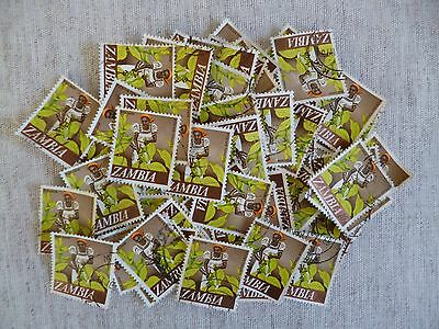 ZAMBIA.  50 CLEAN USED STAMPS ALL THE SAME 10n PICKING TOBACCO AS SHOWN