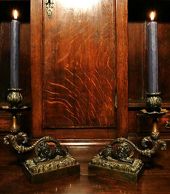 Pair of 19th Century Brass and Bronze Candlesticks