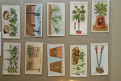 A Full Set of WILLS 1923 GARDENING HINTS Cigarette cards