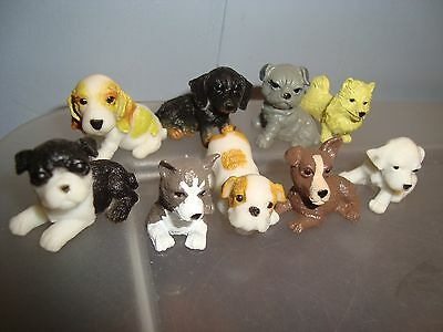Miniature Dollhouse Dogs/ Puppies..lot of 9..free shipping