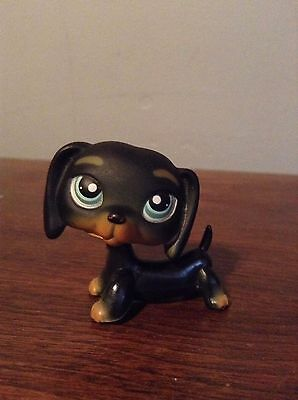 Littlest Pet Shop #325 black and tan dachshund
