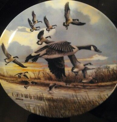 DOMINION CHINA collectable DISPLAY PLATE (THE LANDING)