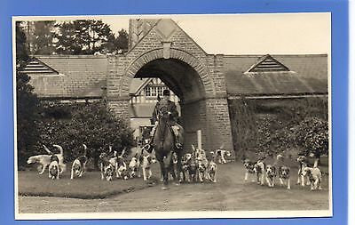 SUPERB RARE 1938c HEREFORD FOX HUNTING HUNT HOUNDS HORSE RP PHOTO POSTCARD