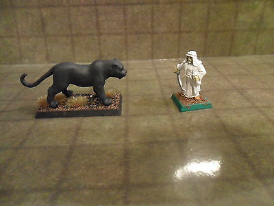 25mm / 28mm  Primed Great Cat Type 1. Pathfinder Dnd Roleplaying. Minees