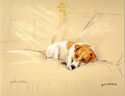 JACK RUSSELL TERRIER DOG LIMITED EDITION PRINT - Artist Proof # 29/85 - On Bed