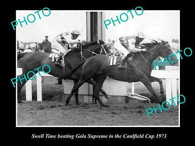 Old Large Horse Racing Photo Of Swell Time Winning The 1973 Caulfield Cup