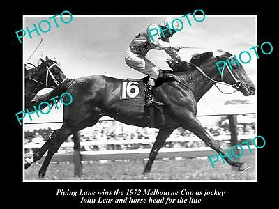Old Large Horse Racing Photo Of Piping Lane, 1972 Melbourne Cup Winner