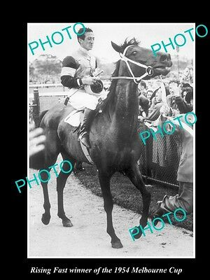 Old Large Horse Racing Photo Of Rising Fast Winning The 1954 Melbourne Cup
