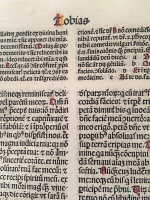Ready To Frame 1489 Bible Leaf Large Grande Folio! 14 Pages!