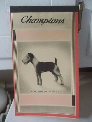 Vintage Champions Unused Wire Haired Terrier Dog Notebook Composition Estate