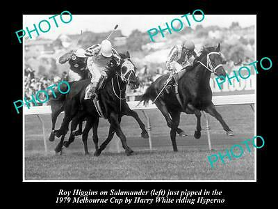 Old Large Horse Racing Photo Of Hyperno, 1979 Melbourne Cup Winner 1