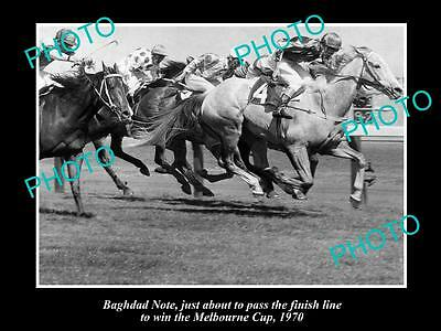 Old Large Horse Racing Photo Of Bhagdad Note Winning The 1970 Melbourne Cup 1