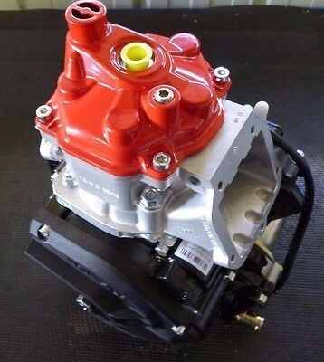 New Rotax Max Evo Bare Engine With Clutch And Starter Assembly - Senior Max
