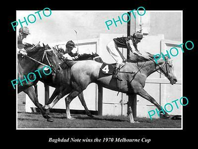 Old Large Horse Racing Photo Of Bhagdad Note Winning The 1970 Melbourne Cup