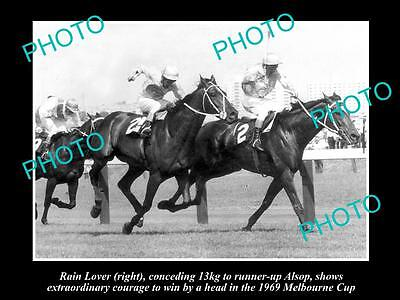 Old Large Horse Racing Photo Of Rain Lover Winning The 1969 Melbourne Cup