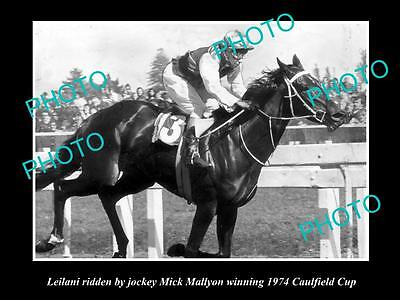 Old Large Horse Racing Photo Of Leilani Winning The 1974 Caulfield Cup, Mallyon