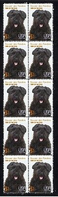 Bouvier Des Flandres Year Of The Dog Strip Of 10 Mint Stamps 2