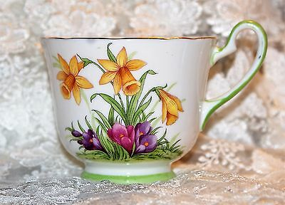 B3704 Vintage Aynsley Bone China Floral Teacup Excellent Cond. Daffodils Crocus