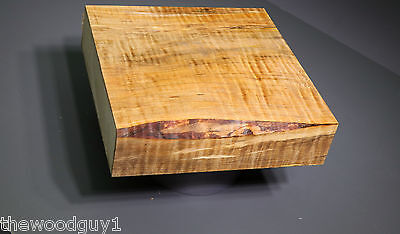 x1299 -  Spalted Curly MAPLE Turning Square   8 x 8     MC = 10-12%