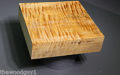 x1315 -  Spalted Curly MAPLE Turning Square   7 3/8 x 7 3/8     MC = 10-12%
