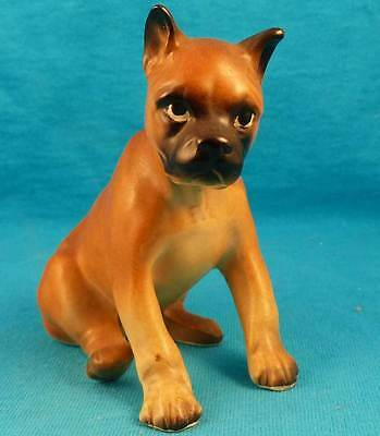 BOXER puppy dog old vintage mid-1900's EXCELLENT FREE SHIPPING!