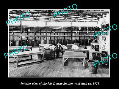 OLD LARGE HISTORIC PHOTO OF THE INTERIOR OF THE ISIS DOWNS WOOL SHED c1925