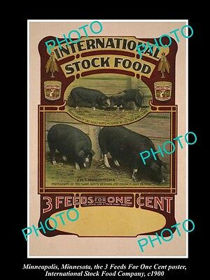 OLD LARGE PHOTO OF MINNEAPOLIS STOCK Co POSTER, PIG FOOD 3in1 STOCK FOOD c1900 3
