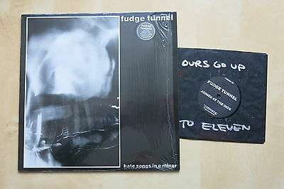 """FUDGE TUNNEL Hate Songs In E Minor UK LP with insert and 7"""" Hand painted"""
