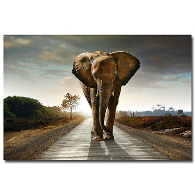 Elephant Poster//Elephants//Animal Poster////Pop Art//17x22in//Great!