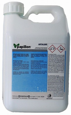Algaecide For Swimming Pool 5 Kg Gardening Chemical Products