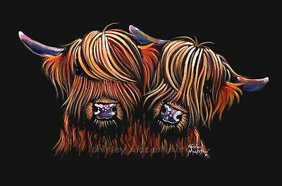 HIGHLAND COW PRINTS of Original Painting ' PALS ' by Shirley MacArthur