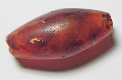 Zurqieh -Af1699- Ancient Egypt, New Kingdom. Carnelian Bead. 1400 B.c