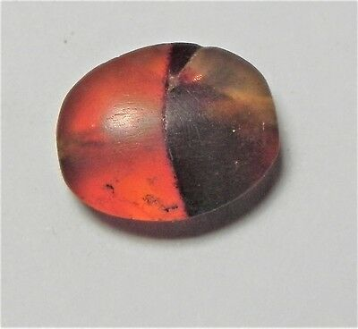 Zurqieh -Af1733- Ancient Egypt , New Kingdom Carnelian Bead. 1400 B.c