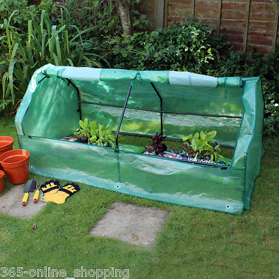 Polytunnel Mini Greenhouse Poly Tunnel Green House Garden Planting Steel Frame