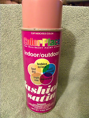 Color Place INDOOR/OUTDOOR Spray Paint - 11 oz - MAUVE  22103 NEW - EB38