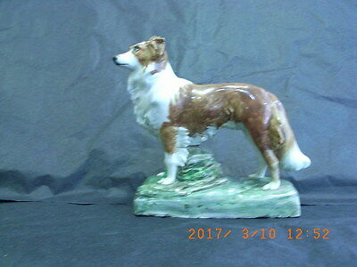 Old Cheyne Pottery of ''Garry'' a Red & White Collie Dod