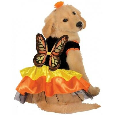 Monarch Butterfly Pet Costume Dog Halloween Fancy Dress