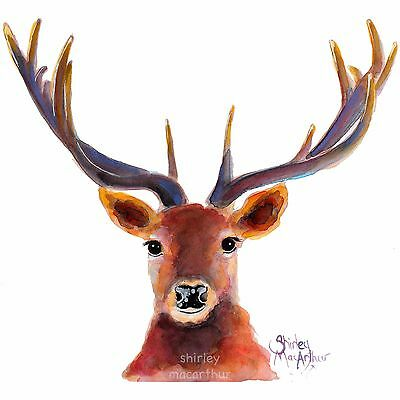 STAG DEER ROE PRINTS of Original Watercolour Painting THE RED STAG by SHIRLEY M