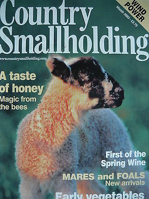 Country Smallholding Magazine March 2003 - Honey From Bees