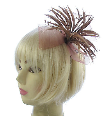 Brown Fascinator in mesh and biot feathers on a headband Weddings, Races