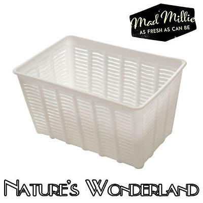 CHEESE MOULD for FETA Large Rectangular to create Greek Brined Curd - Mad Millie