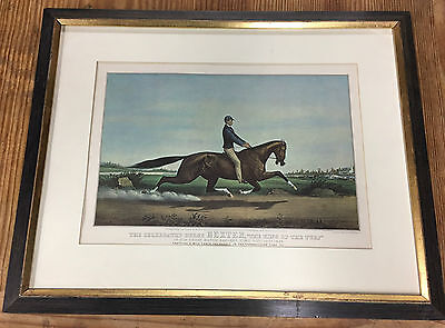 DEXTER The King Of The Turf Print Matted & Framed Under Glass  21 x 17 inches