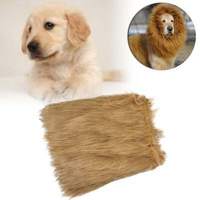 Pet Costume Lion Mane Wig Dog Halloween Sanda Vêtements Dress up Brun clair L DC